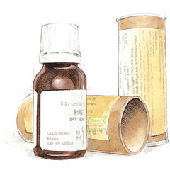 Betulla pubescente Fee 15ml-136